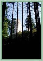 Lietava Burg