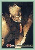 Höhle der toten Fledermäuse