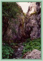 Niederung Prosiecka dolina