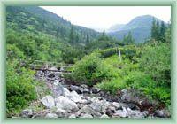 Niederung Žiarská dolina
